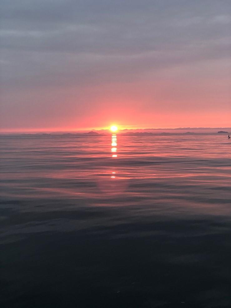 서해 바다 9월14일 대천항 제우스호 광어 우럭 다운샷 조행기 입니다
