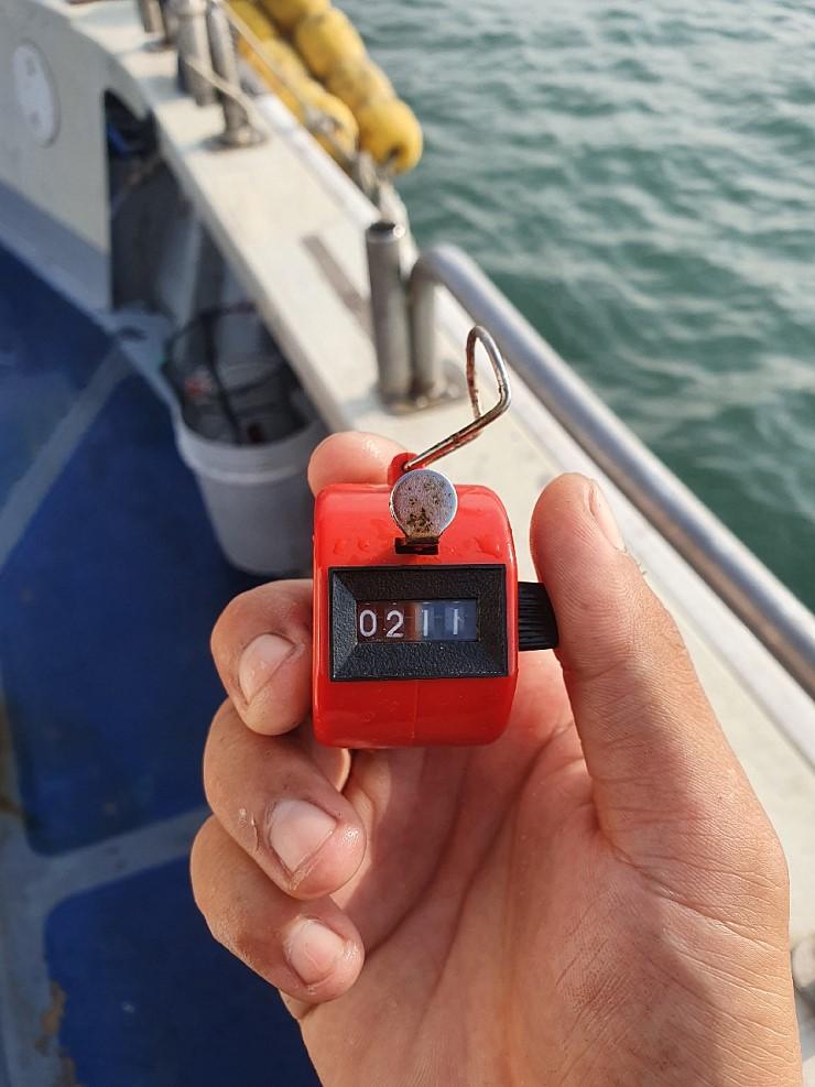 서해바다 대천항 제우스2호 9월 15일  쭈꾸미 조행기입니다