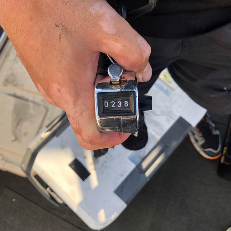 서해 바다 9월16일 대천항 제우스호 쭈,갑오징어 조행기 입니다