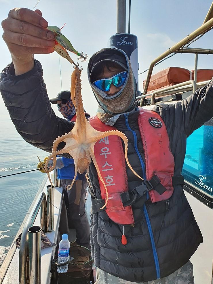 서해 바다 11월5일 대천항 제우스호 쭈,갑,낙 조행기 입니다