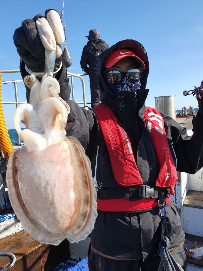 도깨비호 갑오징어 주꾸미 조황(11월 01일)