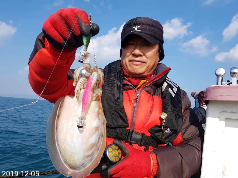 12월5일 통영 갑오징어 조황입니다.