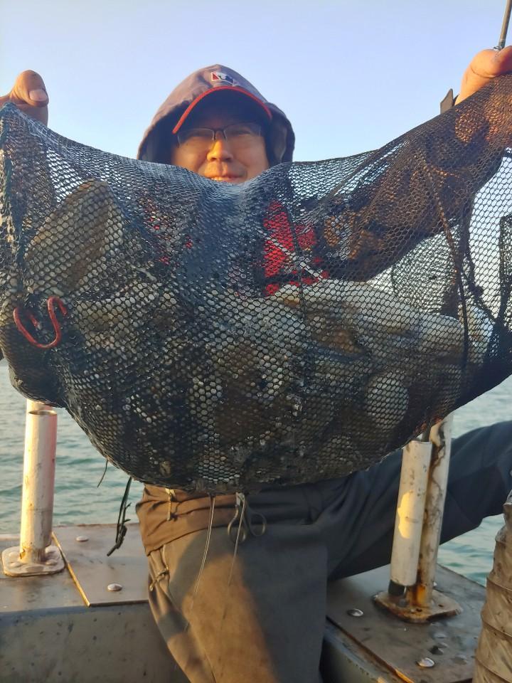 나폴리10,17갑오징어