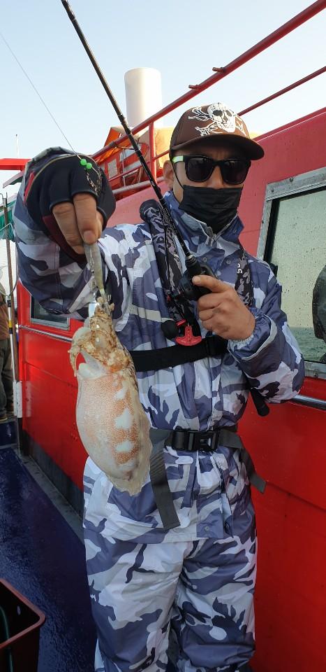 나폴리2호 11월1일갑오징어조황