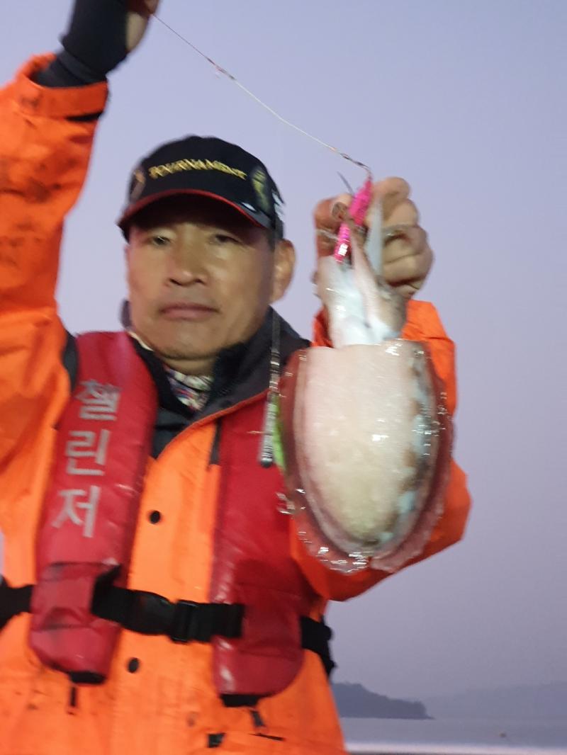 11/01 王갑돌이 먹물가득 쭈꾸미 !!