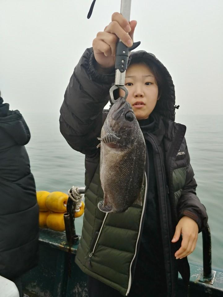 11월24일 서해호 단체조황