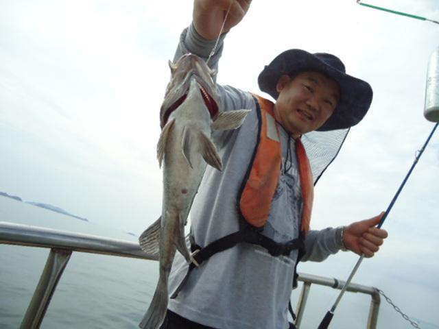 19.07.07 마린낚시 탄도항 대부돌핀호 우럭/광어/놀래미 조황~