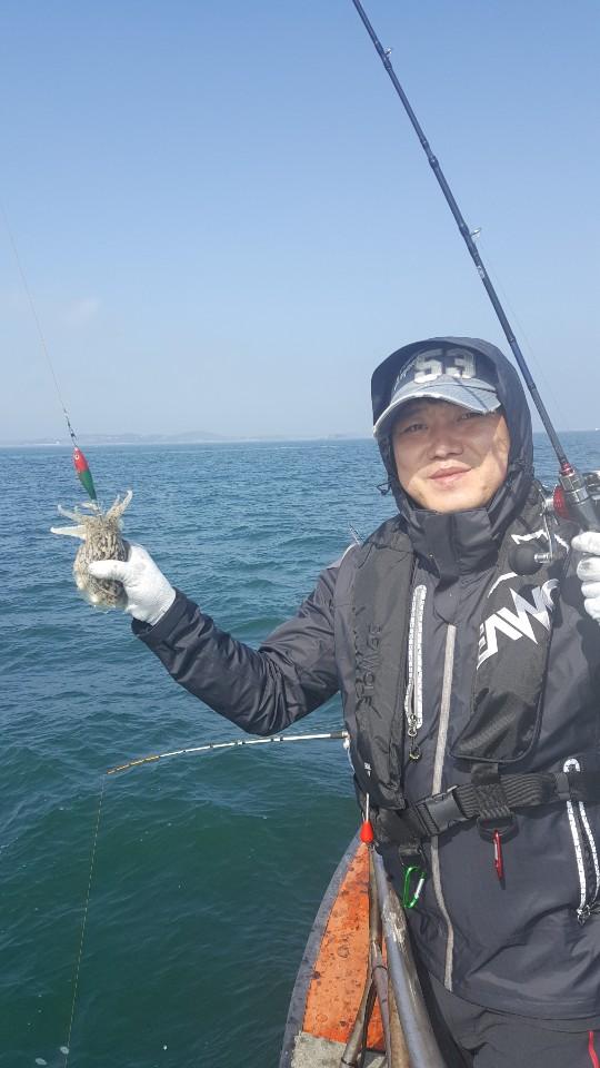 10.4아가미 1호 갑오징어 쭈꾸미 출조 및 조황~