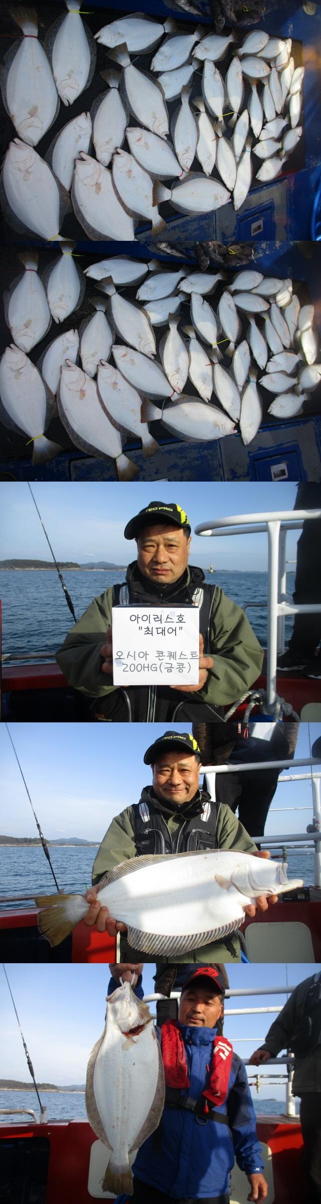 """""""아이리스호"""" 4월 28일 광어다운샷 이벤트출조 조황입니다.."""