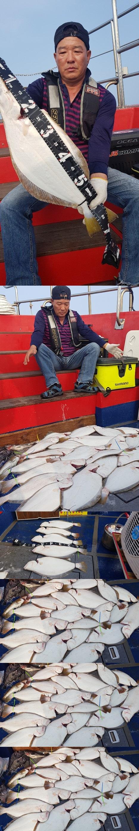 뉴써니호 7월13일 11분 모시고 대광어 다운샷 다녀왔습니다.