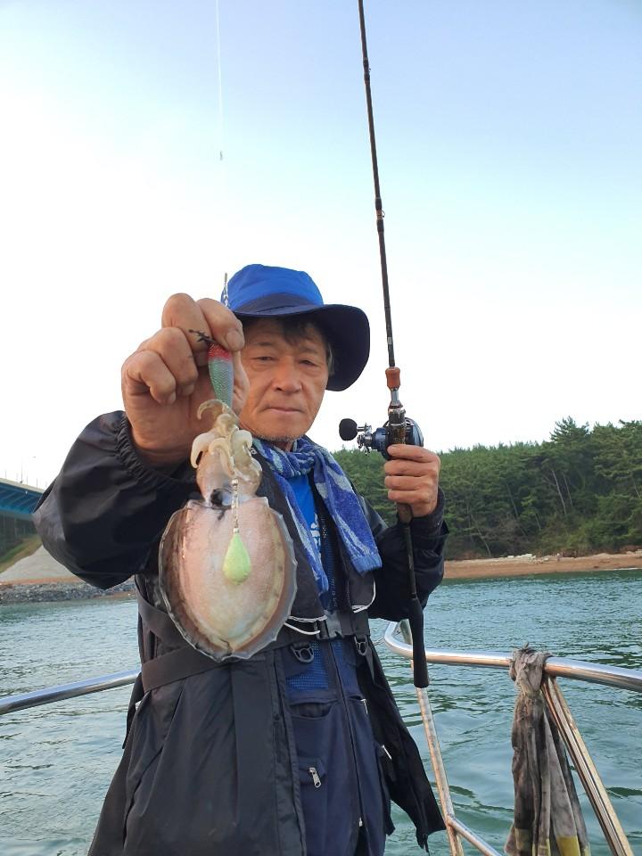9월16일 대운호 갑오징어 조황