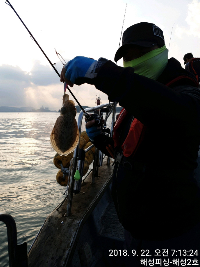 9월22일 해성2호 갑오징어 조황