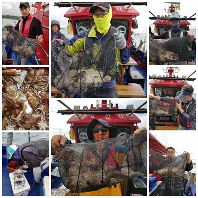2019년 10월 05일 대천항 하이피싱 수호천사호 쭈꾸미 다녀왔습니다.