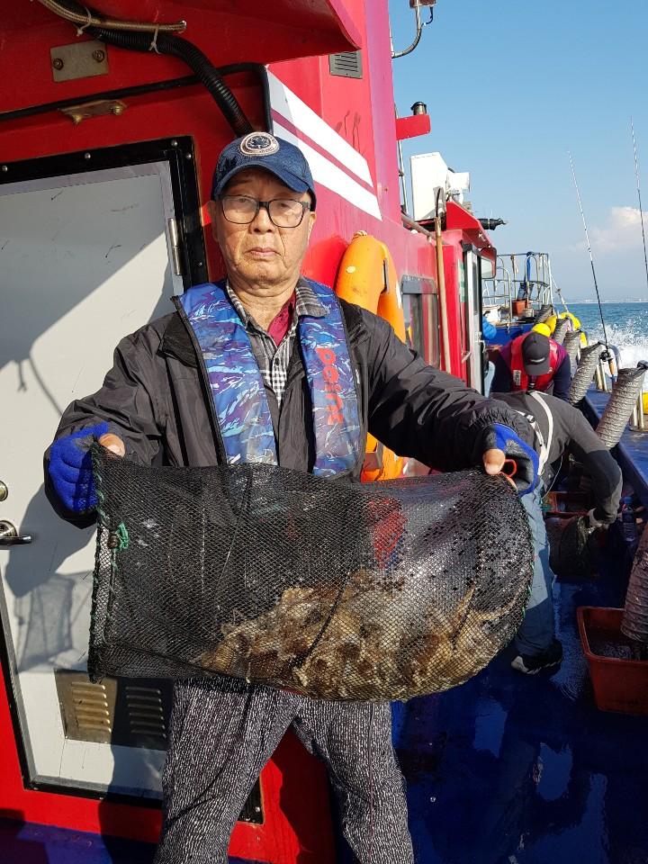 2019년 11월 04일 대천항 하이피싱 수호천사호 쭈꾸미 다녀왔습니다.