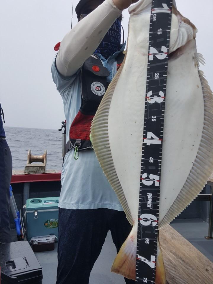 8월 12일 사나거님 72cm대광어 축하드립니다.