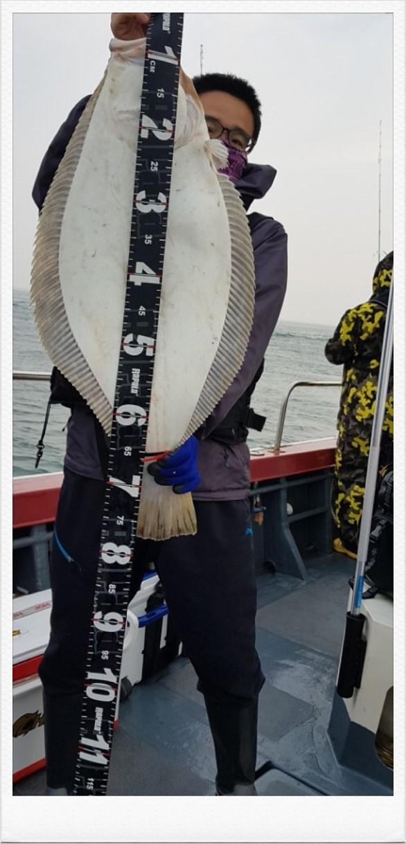 6월 18일 아인스호 78CM대광어~축하드립니다~