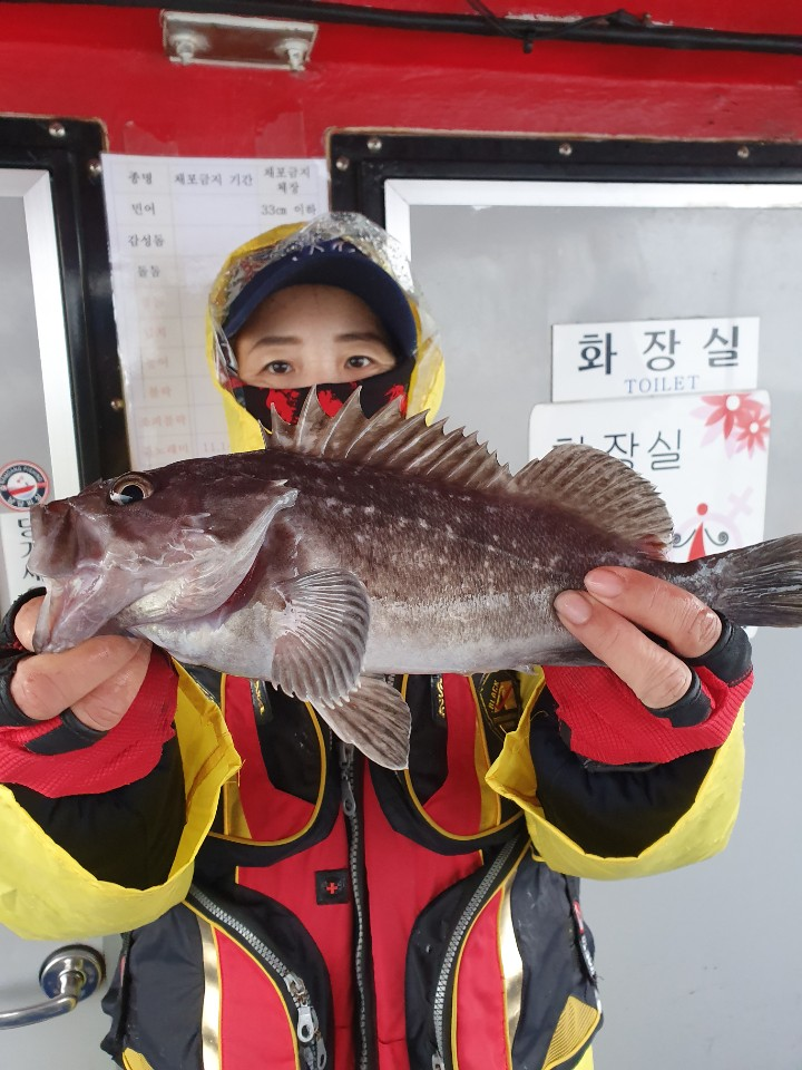12.1 남당피싱 장현호 먼바다 우럭 11人 굿조황!!