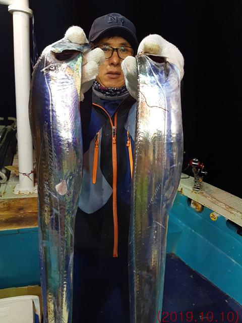 (2019.10.10) 얼음 녹여가며 잡아온 갈치 조황입니다.