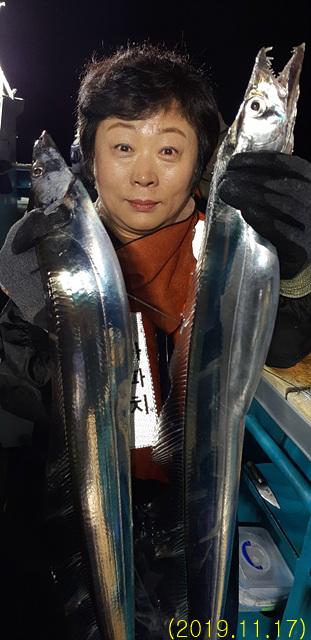 (2019.11.17) 갈치 조황입니다.