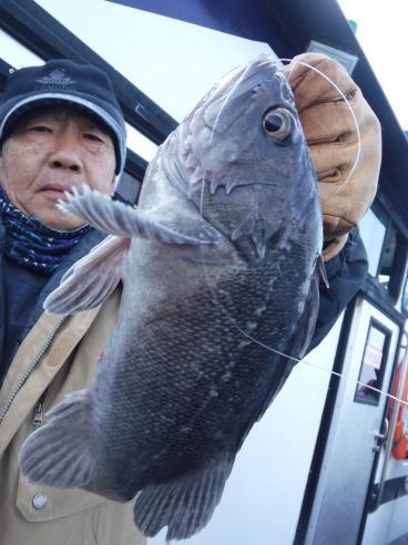 12월 22일 먼~먼바다 외수징 조황~~~