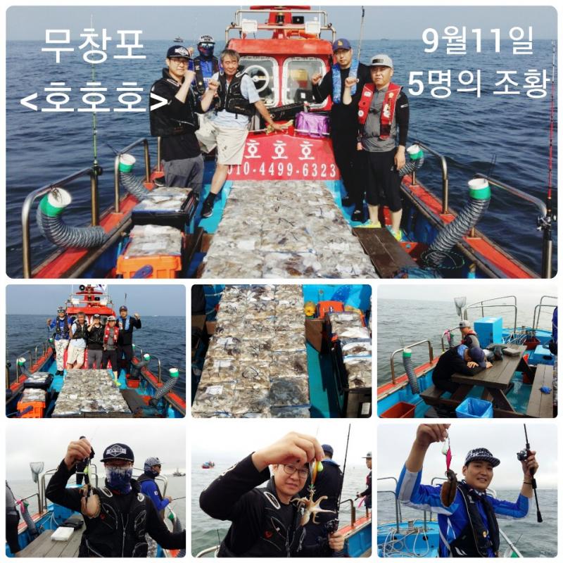 0911 [호호호] 쭈꾸미 조황 (5명 조황)