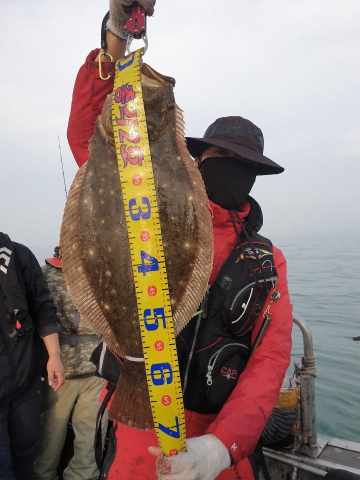 11월 2일 총각2호 생미끼 외수질 조황 (농어)