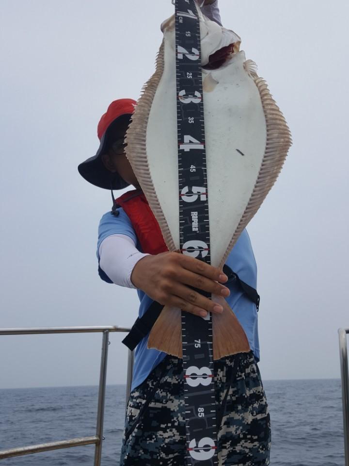 아레스님 76cm대광어 축하드립니다.