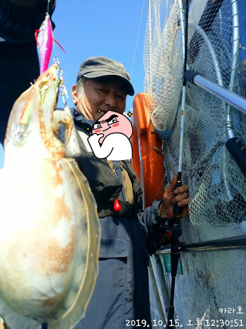 10월 15일 카라호 갑오징어조황입니다.
