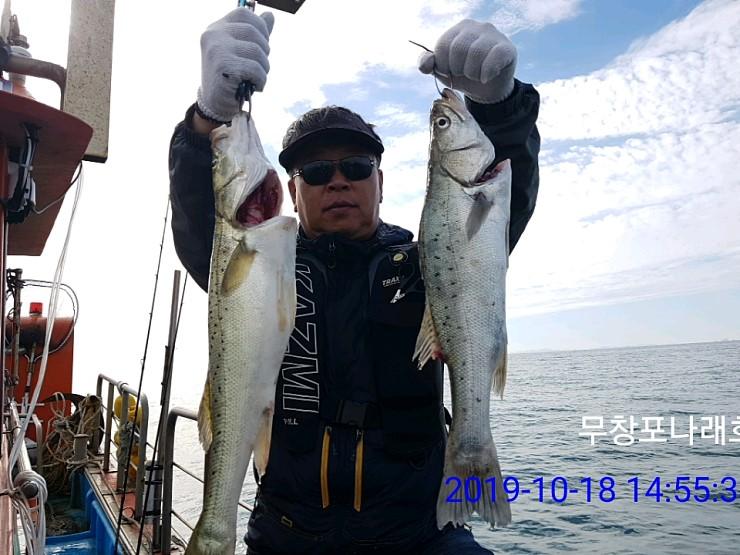 18 일  나래호  생미끼   농어 ,우럭,광어,   역시나  대박  ^^