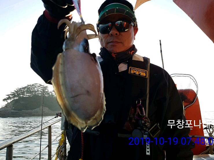 19일      나래호     쭈꾸미  갑오징어 조황 입니다