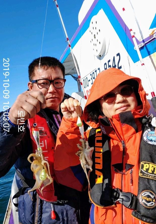 올시즌 쭈갑최고조황 갱신, 갑오징어 대박