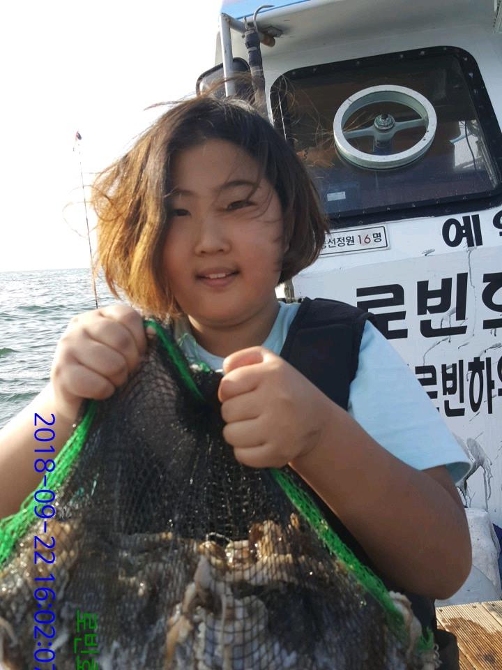 로빈호 쭈꾸미 조황