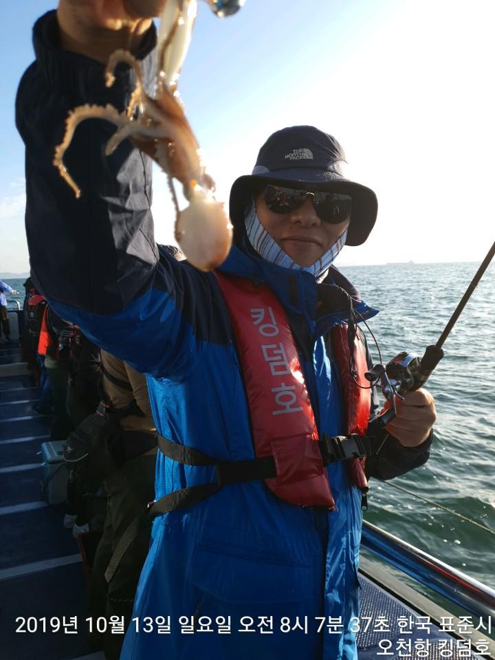 킹덤호 10월 13일 쭈꾸미 조황입니다.