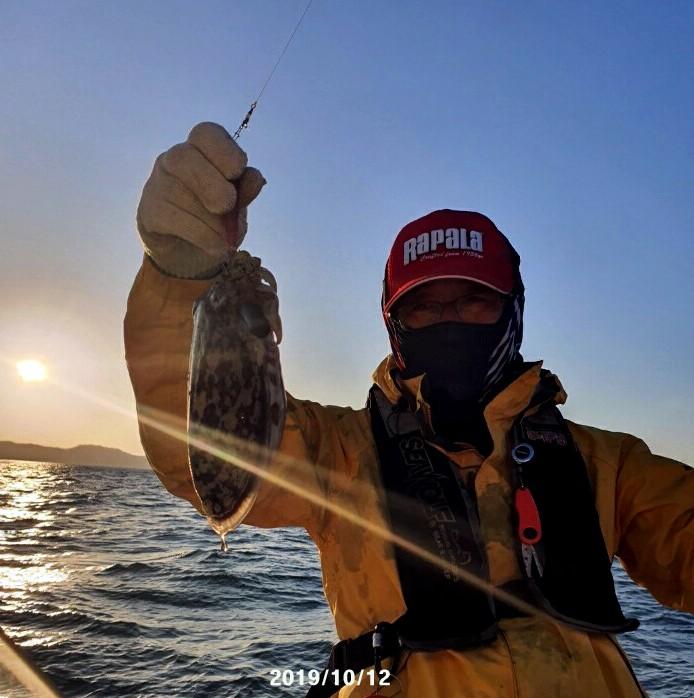 갑오징어 조황 2019년10월12일   대형의 갑오징어로 승부를 걸다.