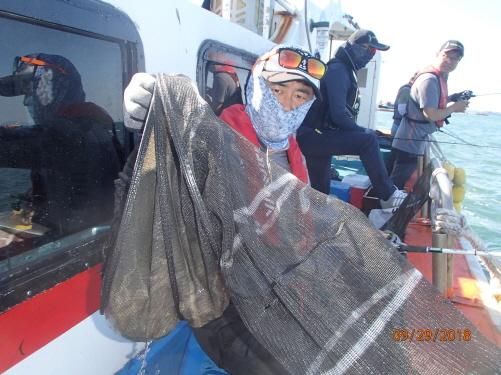 29일 오늘도 갑오징어와 쭈꾸미낚시 조황입니다.
