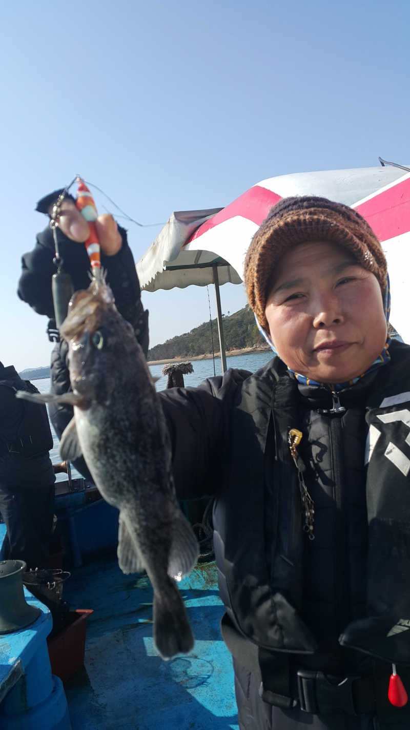 11월4일 오천서해호 쭈꾸미 조황입니다