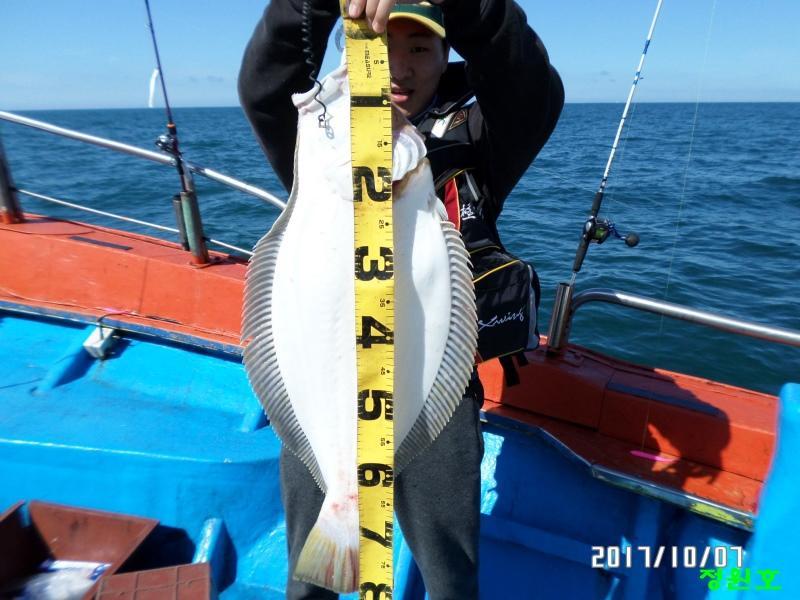 80cm급 대광어 축하 드립니다...