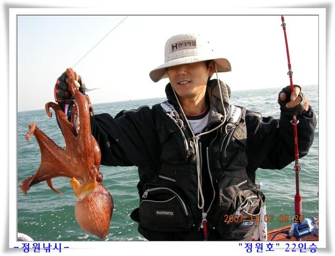 충남권 [문어] 조황 이미지 동영상(07,11,7)