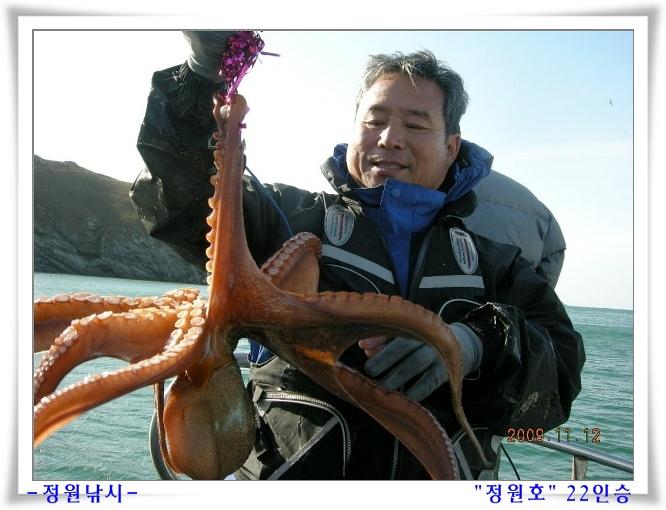 [문어] 조황 이미지 동영상 (09.11.12:청계 왕창낚시)