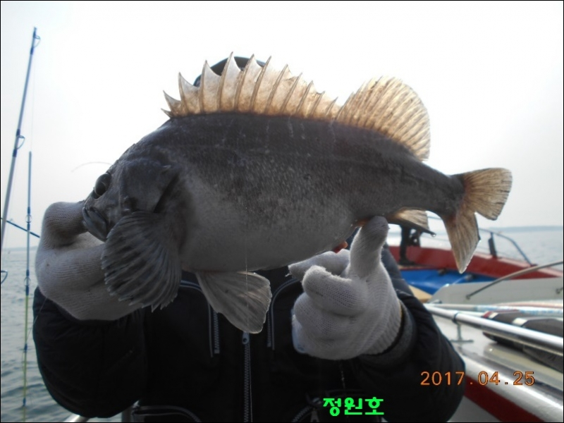 EBS 성난 물고기- 1-3부 보기