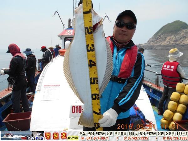 5월 21일 박민우님 팀 80cm급 대광어 입니다.
