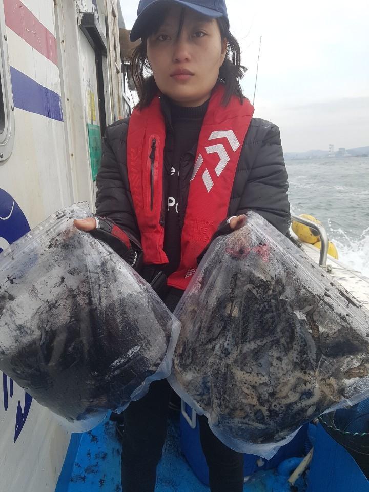 11월10일 [돌고래호] 오천항주꾸미조황