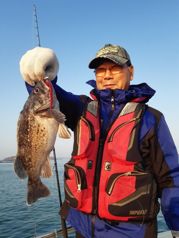 11월24일 [돌고래호] 내만우럭출조 조황 가지고 왔습니다~~~^^