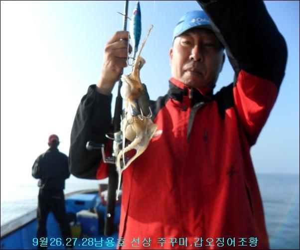 9월26.27.28 선상 주꾸미,갑오징어 조황