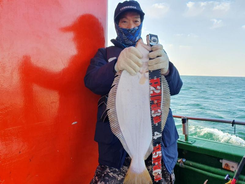 11월22일 푸른바다조황